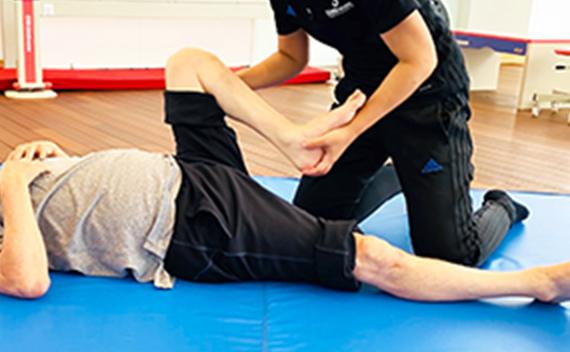 筋肉、関節の運動